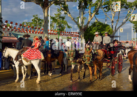 Paare auf dem Rücken der Pferde und Maultiere mit Schlitten auf gepflasterte Straße bei Sonnenuntergang Sevilla - Stockfoto