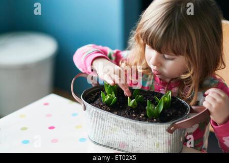 Neugierige Mädchen berühren sprießende Blumen in Blumentopf - Stockfoto
