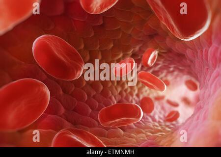 Stilisierte Darstellung, die roten Blutkörperchen fließen durch den Blutstrom. - Stockfoto