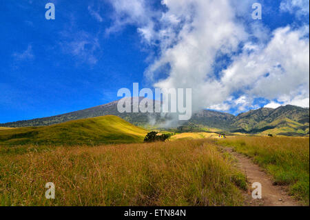 Mount Rinjani, West Nusa Tenggara, Indonesien - Stockfoto