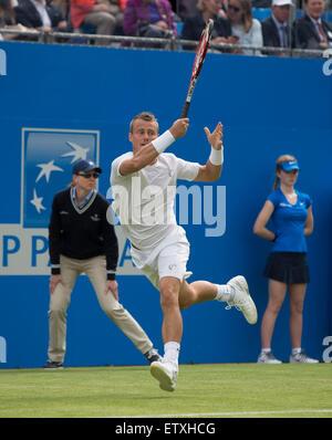 London, UK. 15. Juni 2015. Queens Aegon Championship Tennis. Lleyton Hewitt (AUS) in Aktion in dem, was seit seinem - Stockfoto