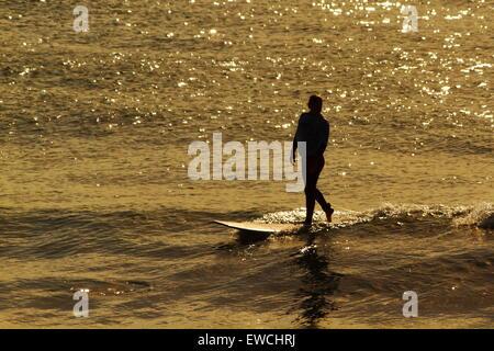 Eine junge Frau Surfer auf einem Longboard als eine Goldene Morgenröte taucht der Pazifik vor Alexandra Headland, - Stockfoto