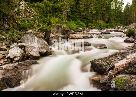 Cle Elum River, Okanogan-Wenatchee National Forest, Washington, USA - Stockfoto