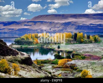 Herbstfarben am Horesthief Lake State Park, Washington. Columbia River Gorge National Scenic Area - Stockfoto