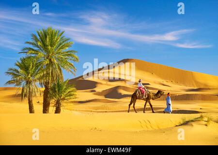 Touristen auf Kamel reiten, Erg Chebbi Wüste bei Merzouga, Sahara, Marokko - Stockfoto