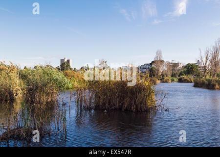 Albert Park Lake, Melbourne, Victoria, Australien - Stockfoto