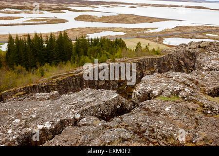 Almannagja Bruchlinie in der mid-Atlantic Ridge nordamerikanische Platte Thingvellir National Park Island - Stockfoto
