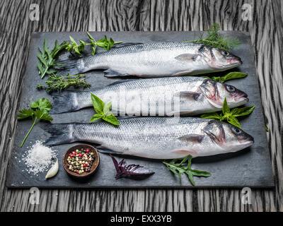 Drei Fische - Wolfsbarsch auf einem Graphit-Brett mit Gewürzen und Kräutern. - Stockfoto
