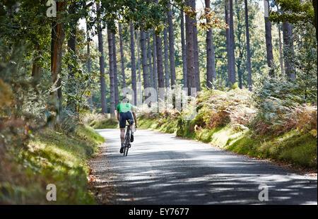 Einzelne Radfahrer fährt entfernt auf einem sonnigen Forststraße - Stockfoto