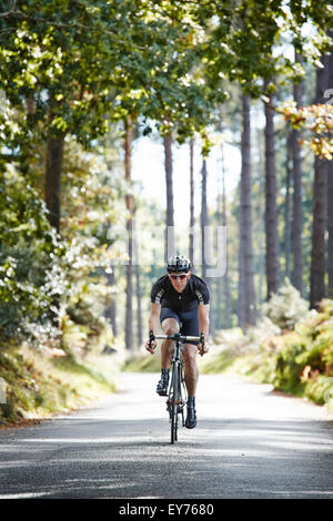 Einzelne Radfahrer fährt nach vorne mit einer sonnigen Forststraße - Stockfoto