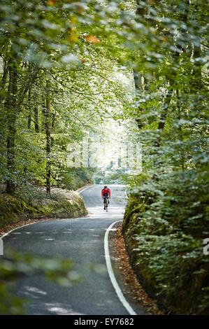 Einzelne Radfahrer fährt entlang einer ruhigen Waldweg - Stockfoto