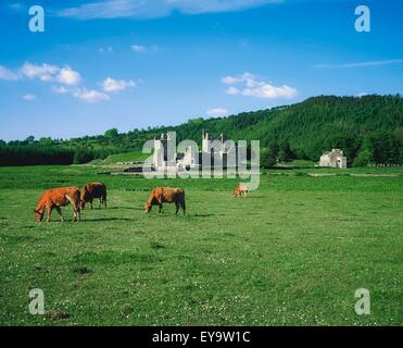 Fore Abtei, Co. Westmeath, Irland - Stockfoto