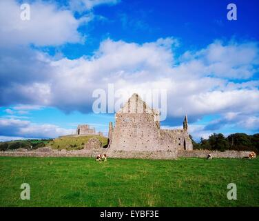Rock Of Cashel, Co. Tipperary, Irland; Mittelalterliche, historische Stätte - Stockfoto