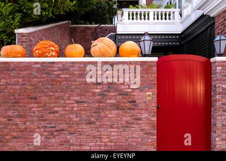 gruselige halloween k rbisse auf holzplanken vor fenster mit be ngstigend hintergrund platziert. Black Bedroom Furniture Sets. Home Design Ideas