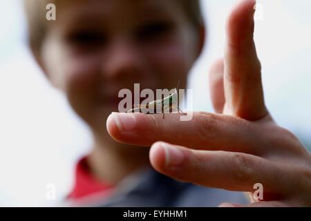 Heuschrecke auf die Finger des jungen - Stockfoto