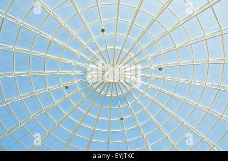 Spider Web-Architektur