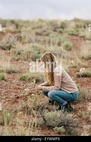 Frau kniend in einer Wüste, wilde Blumen zu pflücken. - Stockfoto
