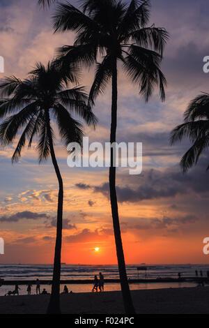 Strand von Waikiki auf Oahu, einer der Hawaii-Inseln bei Sonnenuntergang. - Stockfoto