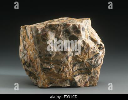 Mineralien - Leopard Skin Jasper - Stockfoto