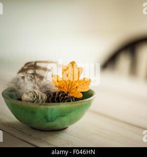 versammelten sich Blätter, Tannenzapfen und Feder in einer grünen Schale auf dem Tisch, mit unscharfen Stuhl im - Stockfoto
