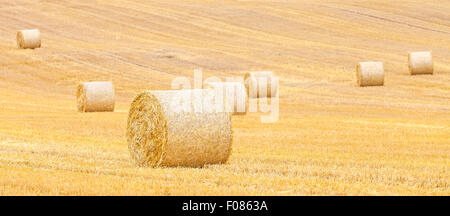 Panoramablick von Heuballen auf abgeernteten Feld, Natur Banner Hintergrund. - Stockfoto