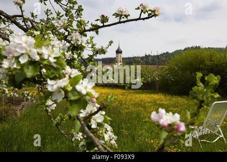 Blick auf Oberschonenfeld Abbey und Feld in Augsburg, Bayern, Deutschland - Stockfoto