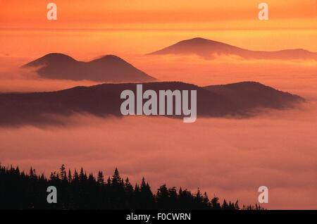 Blick vom Gipfel des Wildcat Skigebietes, New Hampshire USA - Stockfoto