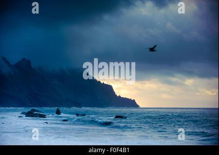 Wilde Küste an einem stürmischen Tag, Benijo, Anaga-Halbinsel, Nord-Ost-Teneriffa, Kanarische Inseln, Spanien, Dezember - Stockfoto