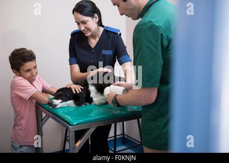 Junge beim Tierarzt mit seinem Border Collie auf dem Untersuchungstisch - Stockfoto