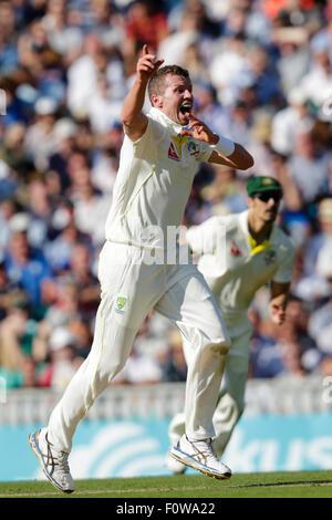 London, UK. 21. August 2015. Investec Asche 5. Test, Tag 2. England gegen Australien. Australiens Peter Siddle Appelle - Stockfoto