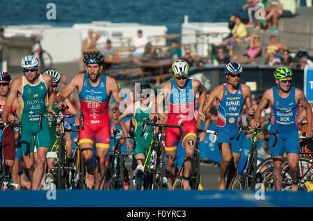 Stockholm, Schweden. 23. August 2015. Athleten kämpfen während der 2015 ITU World Triathlon in Stockholm, Schweden, - Stockfoto