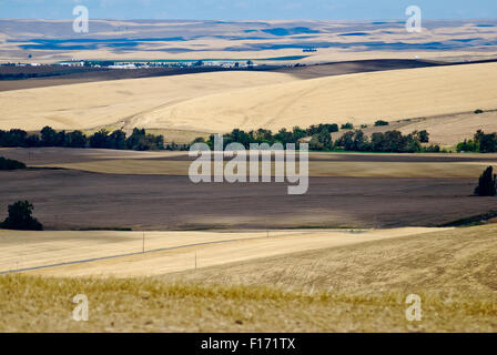 Die sanften Hügel des Walla Walla Valley, Eastern Washington USA - Stockfoto