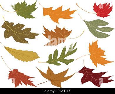 Wind geblasen Herbstlaub Ihre Entwürfe hinzu - Stockfoto