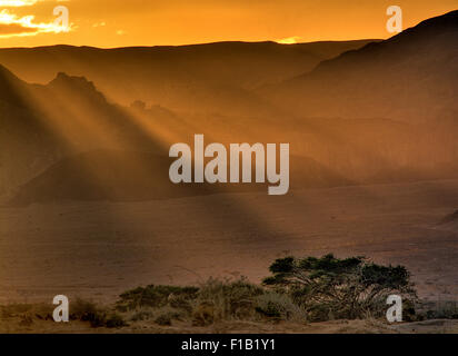 Landschaft-Sammlung - Negev-Wüste - Stockfoto