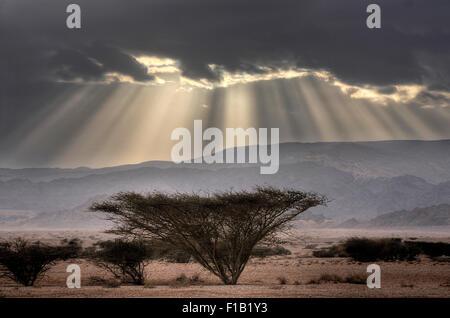 Inspirierende Himmel und Wüstenlandschaft - Stockfoto