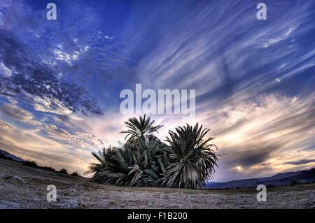 Dramatische Himmel und Wüstenlandschaft Desert Collection - Negev - Stockfoto