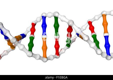 Vereinfachte DNA-helix - Stockfoto