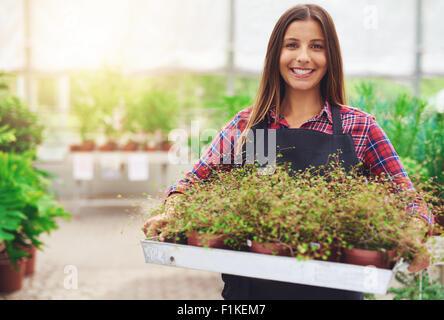 Lächelnde Frau arbeitet in einem kommerziellen Kinderzimmer, Verkauf von Pflanzen zum halten ein Tablett mit Topfpflanzen - Stockfoto