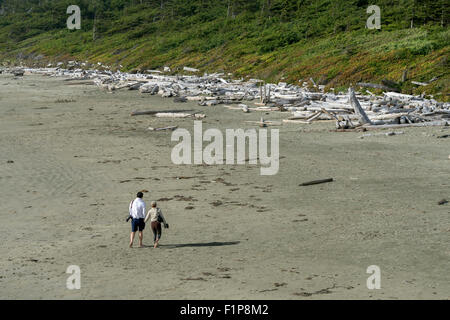 Treibholz auf Long Beach, Pacific Rim National Park, Tofino, Britisch-Kolumbien - Stockfoto