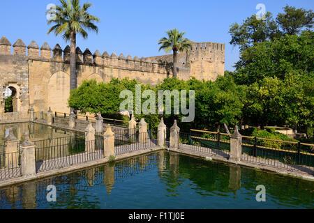 Wasserspiel in den Gärten des Alcázar de Los Reyes Cristianos in Córdoba, Andalusien, Spanien - Stockfoto