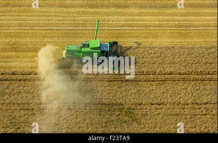 Mähdrescher mit Staub spuckt Sie auf einem Maisfeld, Sauerland, Nordrhein-Westfalen, Deutschland - Stockfoto