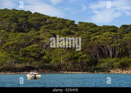 Frankreich, Var, Iles d'Hyeres, Parc National de Port Cros (National Park von Port Cros), Porquerolles island, die - Stockfoto