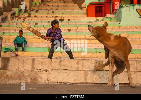 Ein indischer Junge spielt Cricket auf ein Ganges Fluss Ghat während eines Hundes Kratzer und scheint das Spiel - Stockfoto