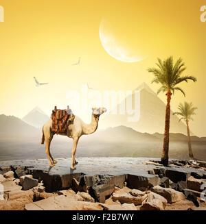 Kamel und Vögel unter Mond in der Nähe von Pyramiden. Elemente dieses Bildes, eingerichtet von der NASA - Stockfoto