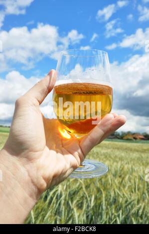 Glas Bier in der Hand gegen Gerste Ohren - Stockfoto