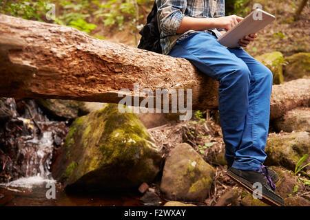 Junge sitzt auf einem Baum in einem Wald mit einem Tabletcomputer - Stockfoto