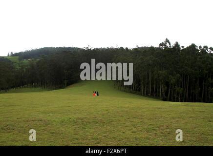 drei Mädchen Erwachen im grünen Rasen in Richtung Wald. - Stockfoto