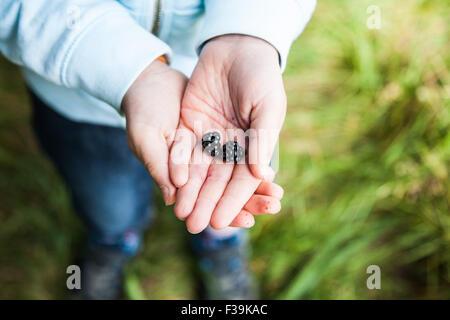 Nahaufnahme eines Kindes mit zwei Brombeeren in der Hand - Stockfoto