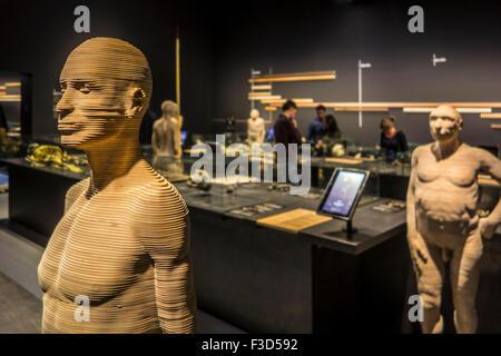 Lebensgroße 3D Hominiden Arten, die veranschaulichen, menschliche Evolution, königlichen belgischen Institut für - Stockfoto