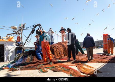 Angelboot/Fischerboot mit Fischern aussortieren die Netze mit Möwen fliegen overhead, Portugal angedockt - Stockfoto